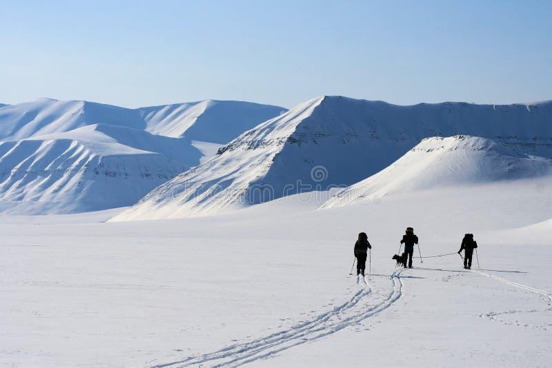 Svalbard Norge. royaltyfria bilder