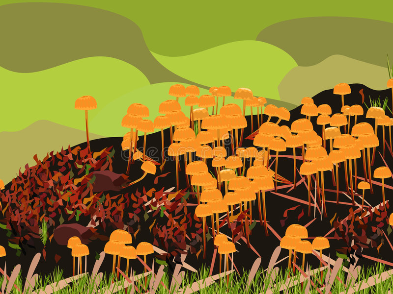 svamp stock illustrationer