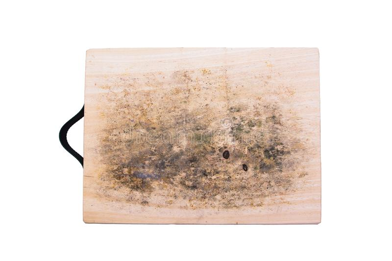 Svamp på över skärbrädan som isoleras på vit bakgrund arkivfoto