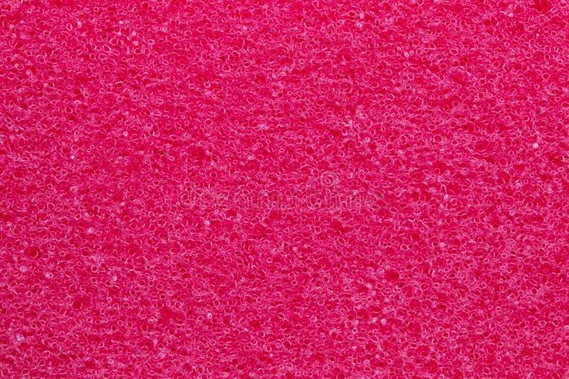 Svamptexturbakgrund Närbild av röd badsvamptextur med den porösa strukturen för bakgrund Makro royaltyfria foton
