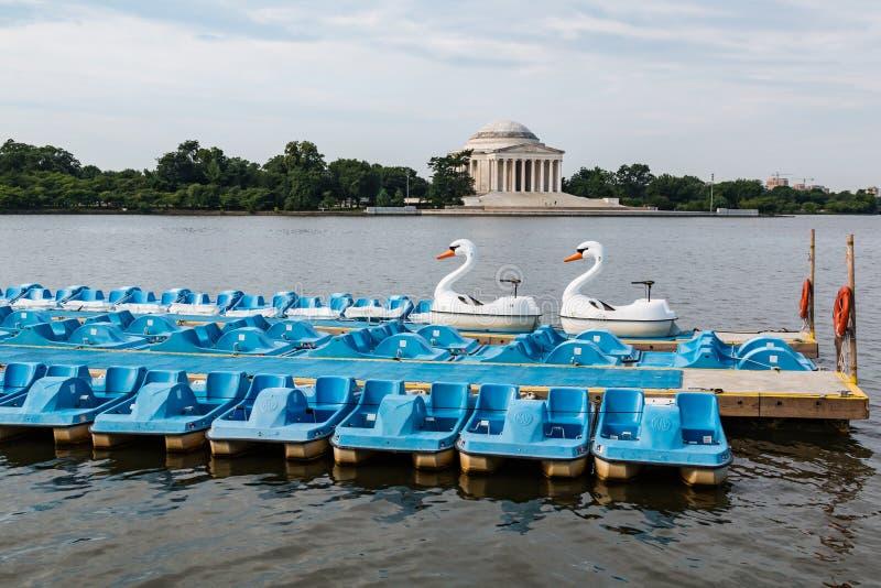 Svan- och skovelfartyg på Washington, tidvattens- handfat för DC royaltyfria foton