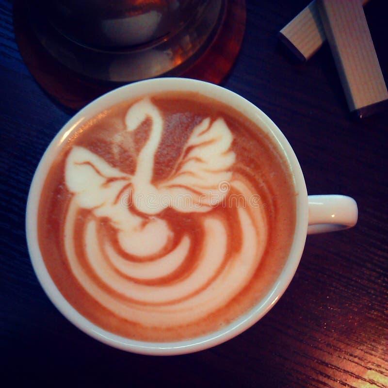 Svan på cappuccino arkivfoto