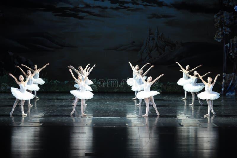 Svanfamilj-balett svan sjön arkivbilder
