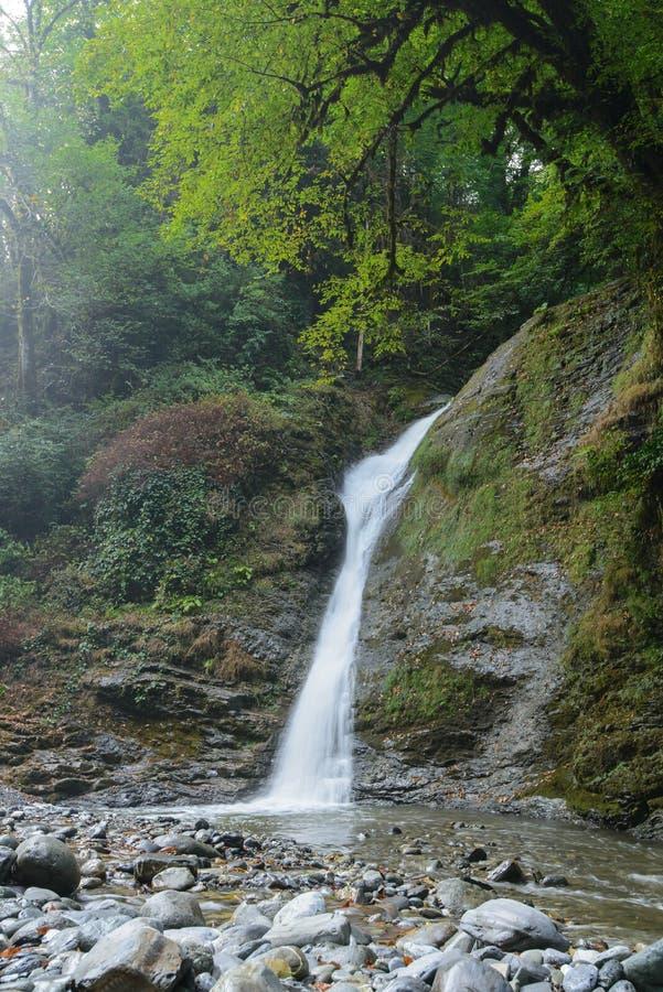 Svanidze vattenfall i den Sochi nationalparken, Ryssland royaltyfri foto