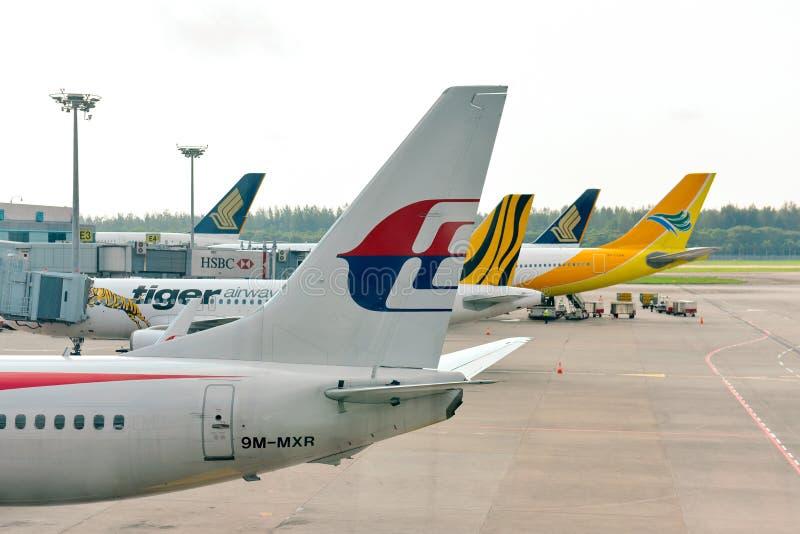 Svansar av Malaysia Airlines, Tiger Air, Cebu Pacific och Singapore Airlines på den Singapore Changi flygplatsen royaltyfri fotografi