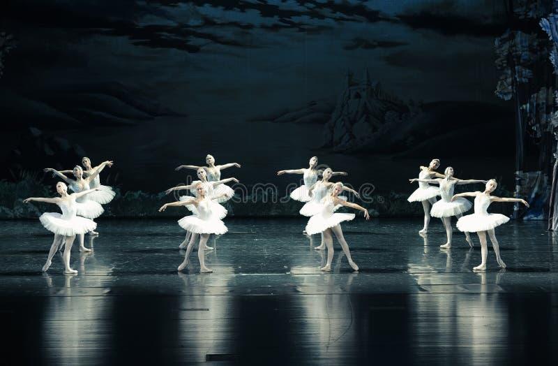 SvanStam-balett svan sjön arkivbild