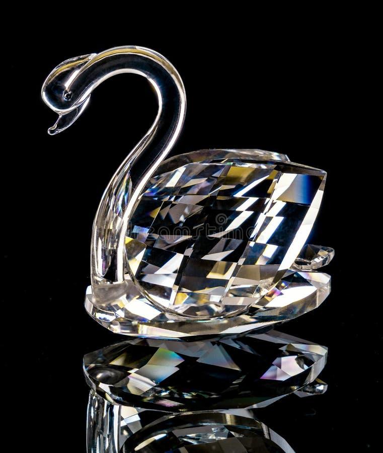 Svanstatyetten som göras av exponeringsglas, blänker på en svart bakgrund royaltyfria foton