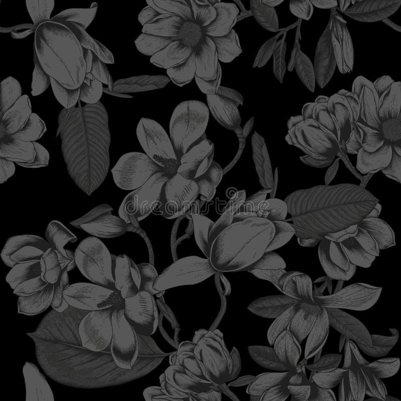 Svart bakgrund magnolias Blommor bakgrund blommar den seamless vektorn Vårbotanik av att blomma träd Trädgårdgrönsak p fotografering för bildbyråer