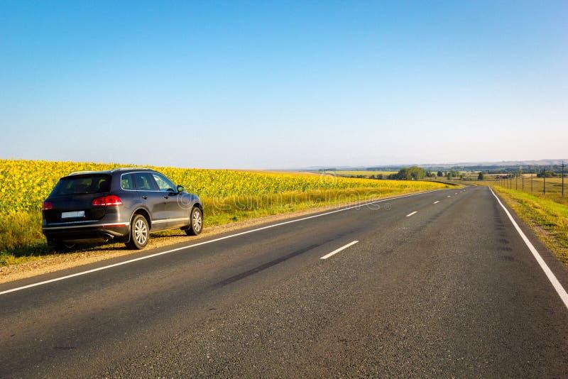 Svart bil som parkeras på vägsida med fältet av guld- solrosbakgrund royaltyfria bilder