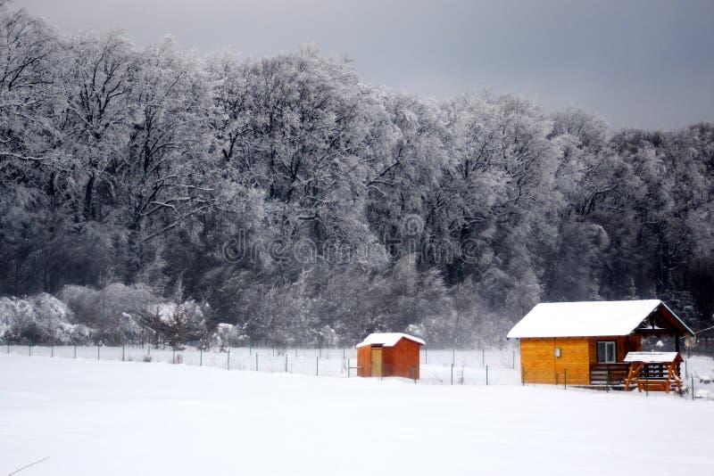 svart blått footwayfotolandskap tonade vita vinterträn arkivbild