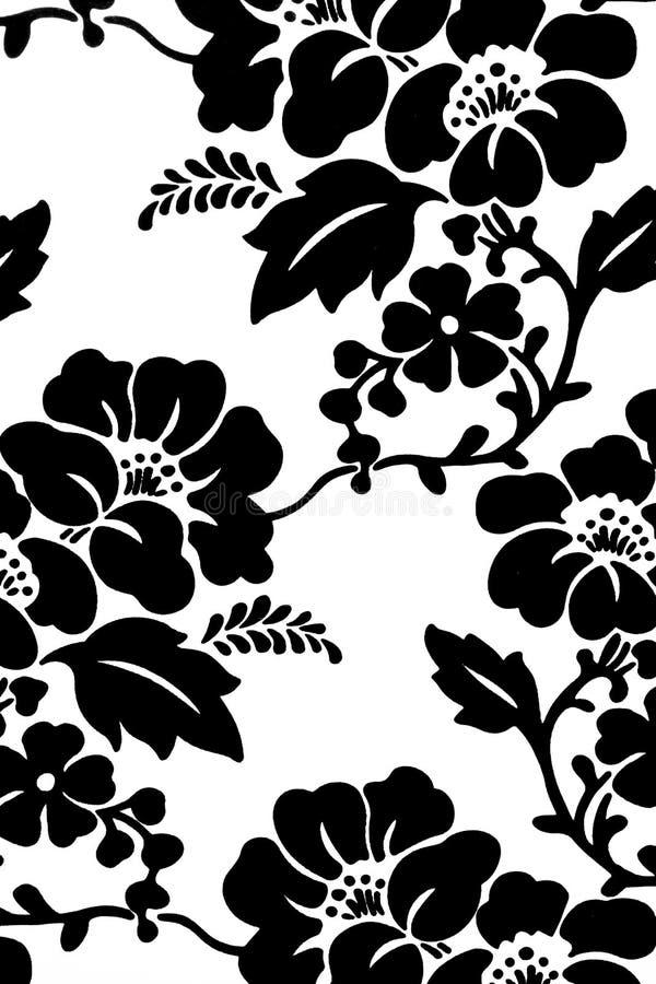 svart blommahibiskuswhite royaltyfri fotografi