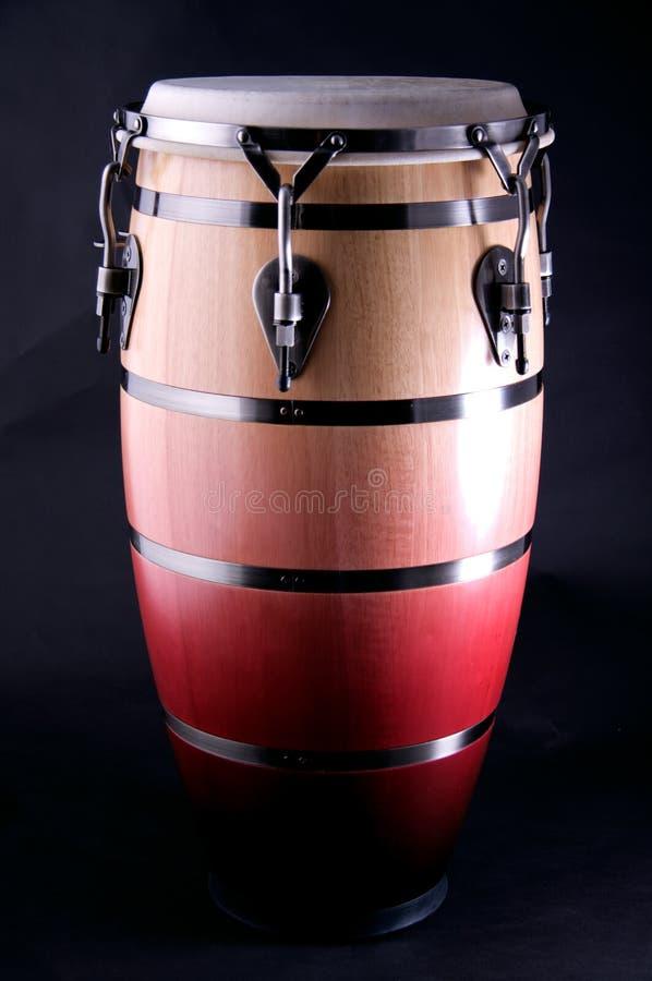 svart brun conga isolerad red arkivfoton