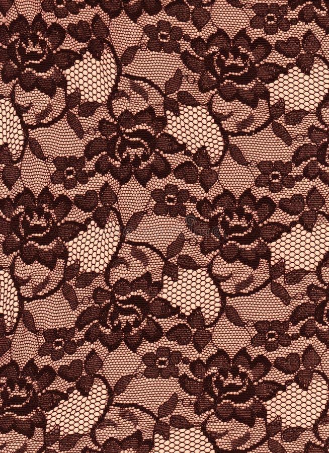 Svart brunt snör åt rostygbakgrund royaltyfri foto