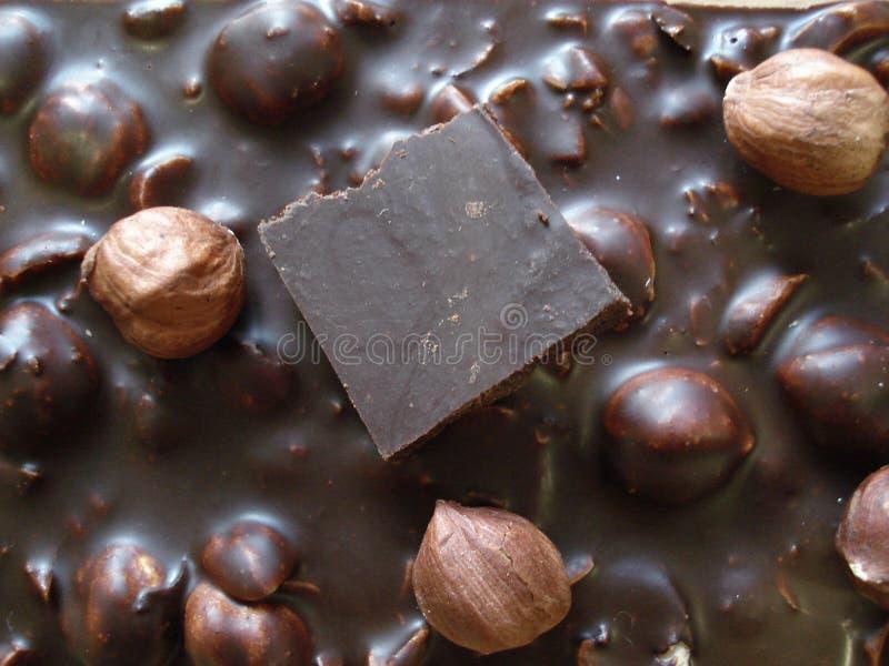 Svart choklad med hasselnötter Ett stycke av choklad på en chokladstång fotografering för bildbyråer