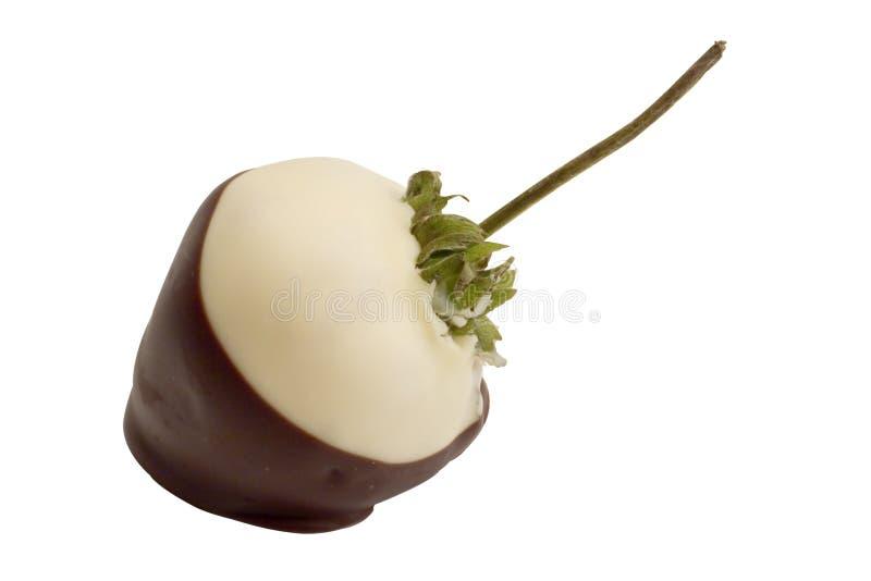 svart choklad räknade jordgubbewhite royaltyfri foto