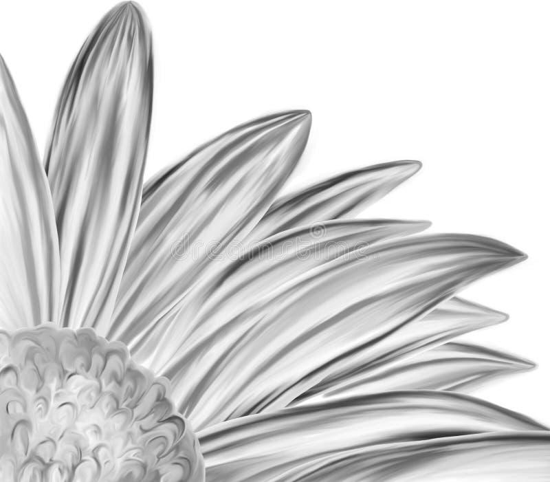 svart closeup tecknad blommahandwhite royaltyfri illustrationer