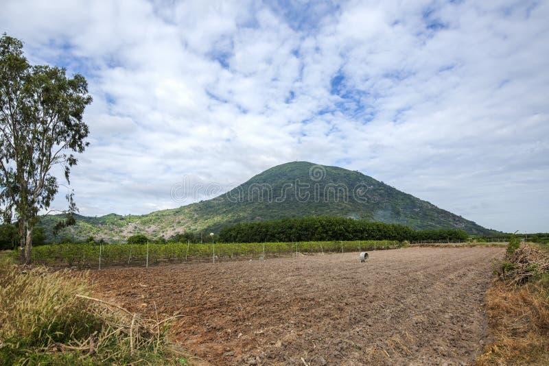 Svart dam Mountain (den Nui lodishålan), Tay Ninh landskap, Vietnam royaltyfria foton
