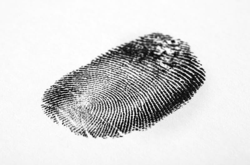 svart fingeravtryckwhite Friktionskantmodell royaltyfria foton
