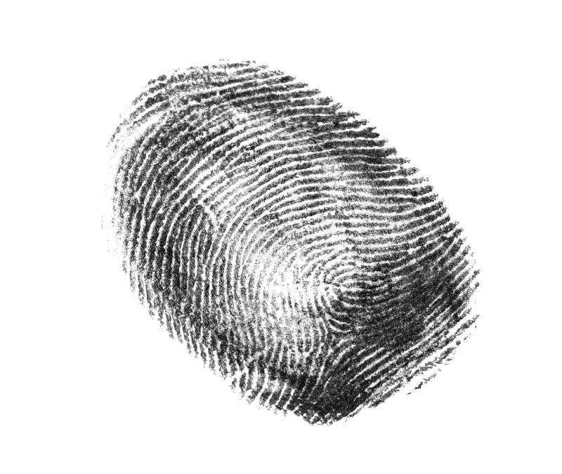 svart fingeravtryckwhite Friktionskantmodell royaltyfria bilder