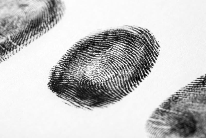 svart fingeravtryckwhite Friktionskantmodell royaltyfri fotografi