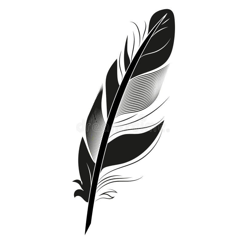 Svart fjäder på för fågelkalligrafi för vit bakgrund grafisk illustration för beståndsdel för konst för teckning för vinge för pe royaltyfri illustrationer