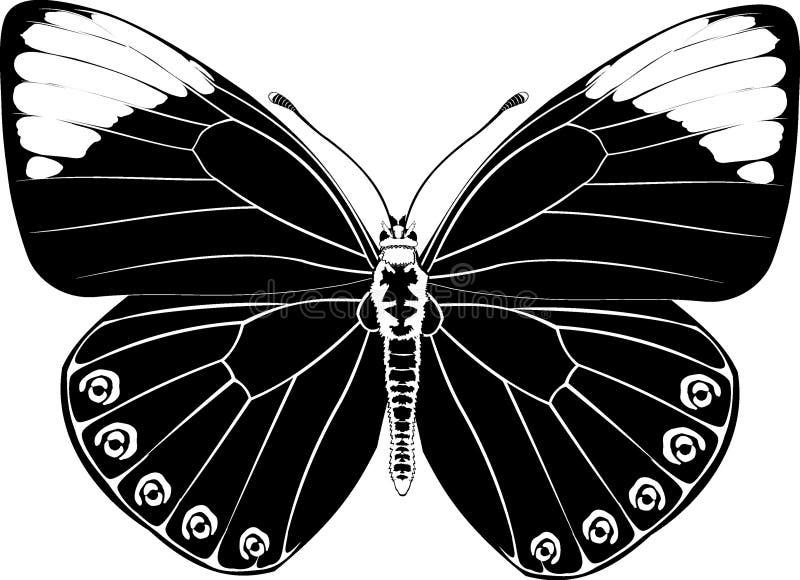 svart fjärilsfantasi vektor illustrationer