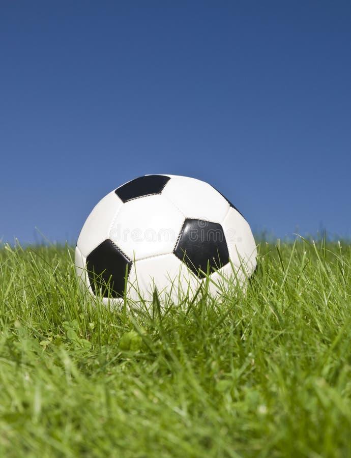 svart fotbollwhite arkivfoto