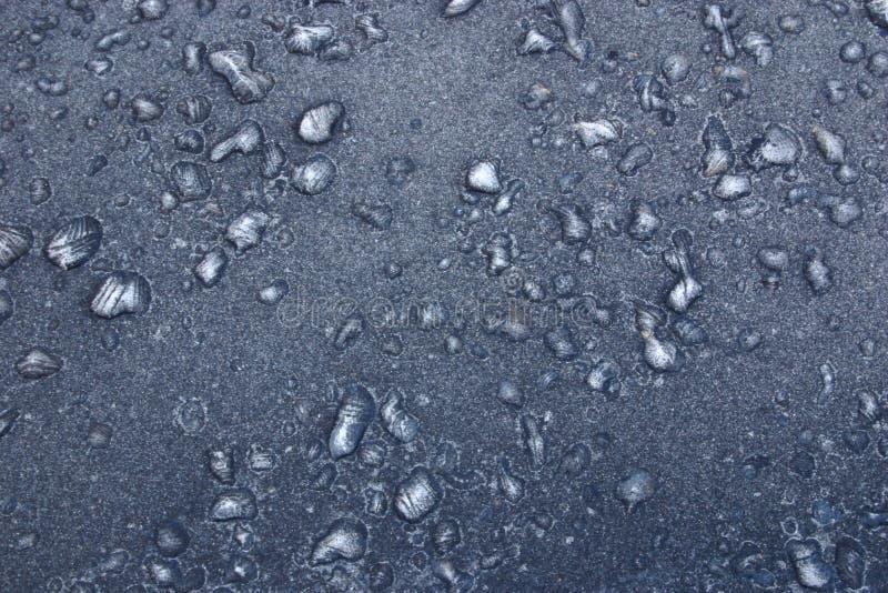Svart Frost Fotografering för Bildbyråer