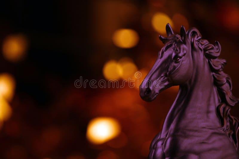 Svart hästdiagram studiokvalitet royaltyfri bild