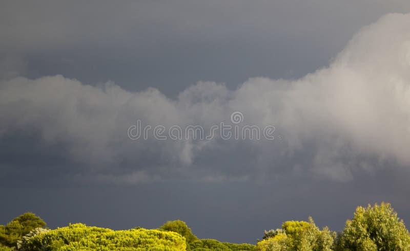 Svart himmel över Calvi, Korsika, Frankrike royaltyfri bild
