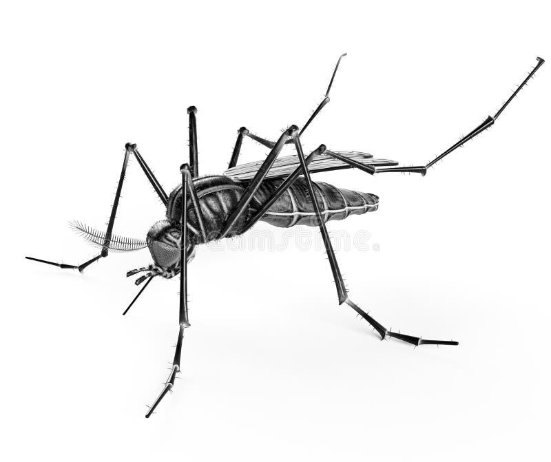 Svart isolerad mygga vektor illustrationer