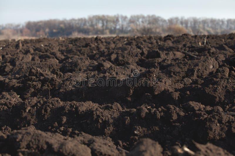 Svart jord plogat fält arkivbild