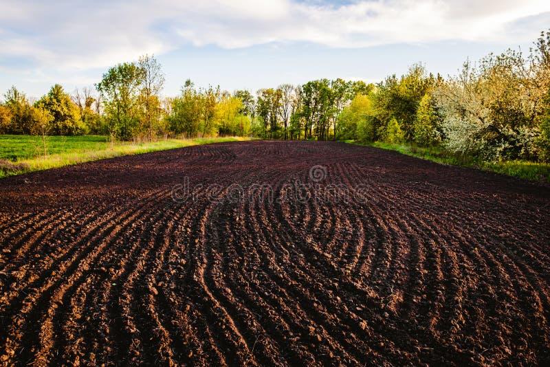Svart jord plogat fält Jordtextur royaltyfri bild