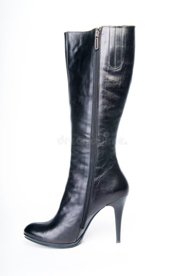 svart kängakvinnlig arkivfoto