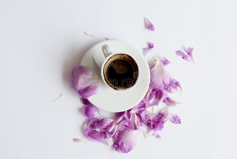 Svart kaffe med rosa pionkronblad royaltyfria foton