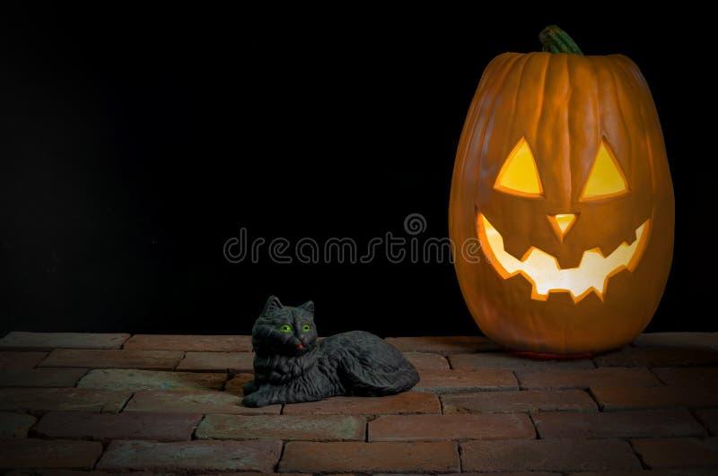 Svart katt med Stålar-NOLLA-lyktan royaltyfri bild