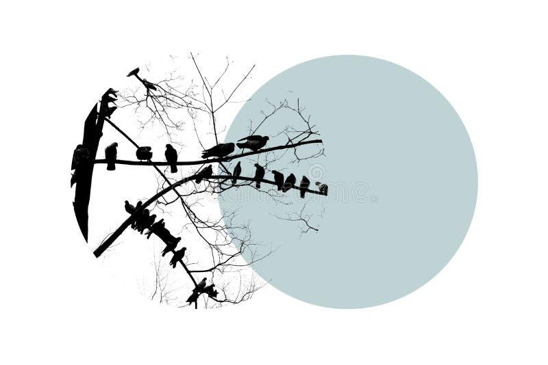 Svart kontur av det kala trädet med fågelduvor på filial på blå cirkel Den stora designen för några ämnar stock illustrationer
