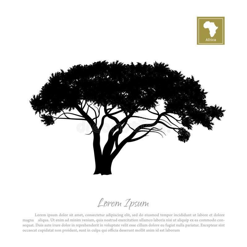 Svart kontur av en träd- och vitbakgrund afrikansk natur Paraplyakacia royaltyfri illustrationer
