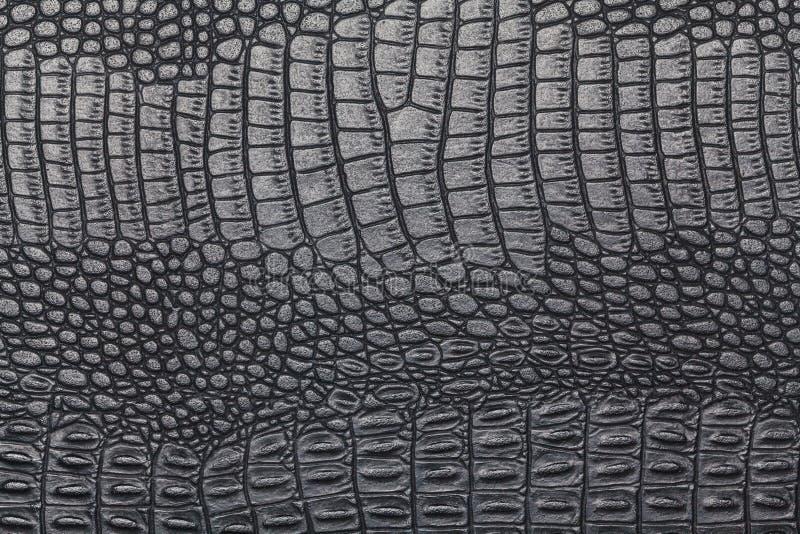 Svart krokodilhudtextur arkivfoton
