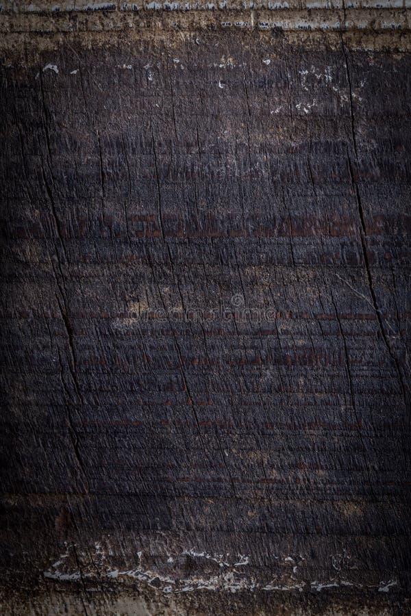 Svart mörk wood bakgrund, yttersida för träbrädebusekorn royaltyfria foton
