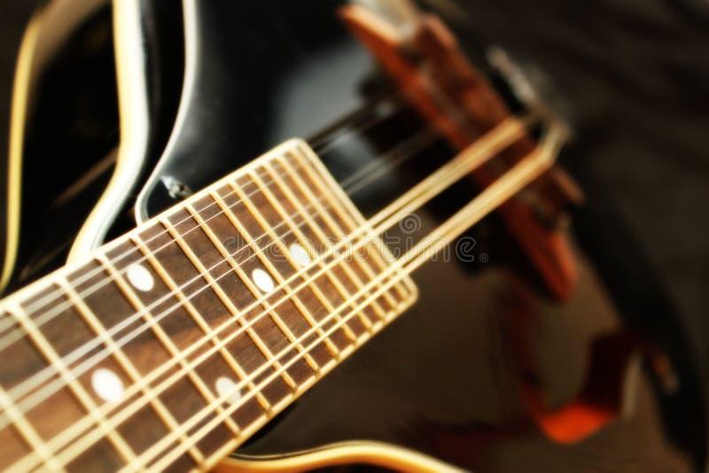 svart mandolin royaltyfri foto