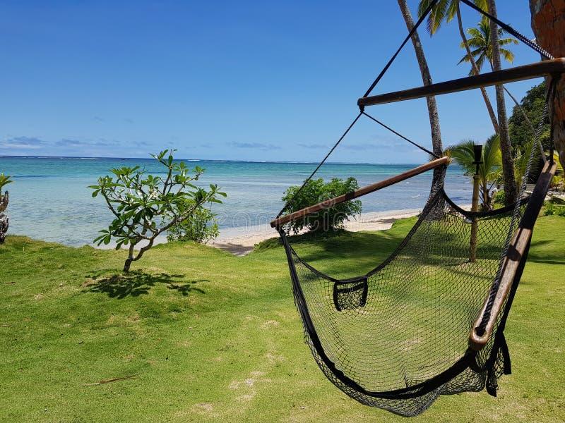 Svart netto avslappnande gungastol på grönt gräs bredvid en vit sandstrand med kristallklart vatten och palmträd i Fiji royaltyfri fotografi