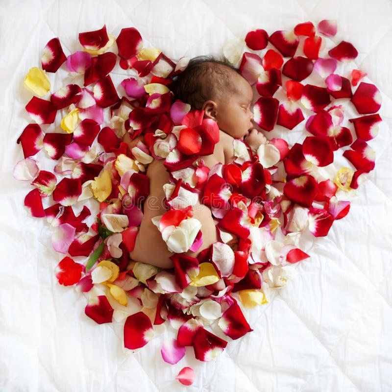 Svart nyfött behandla som ett barn att sova i rosa kronblad royaltyfri fotografi