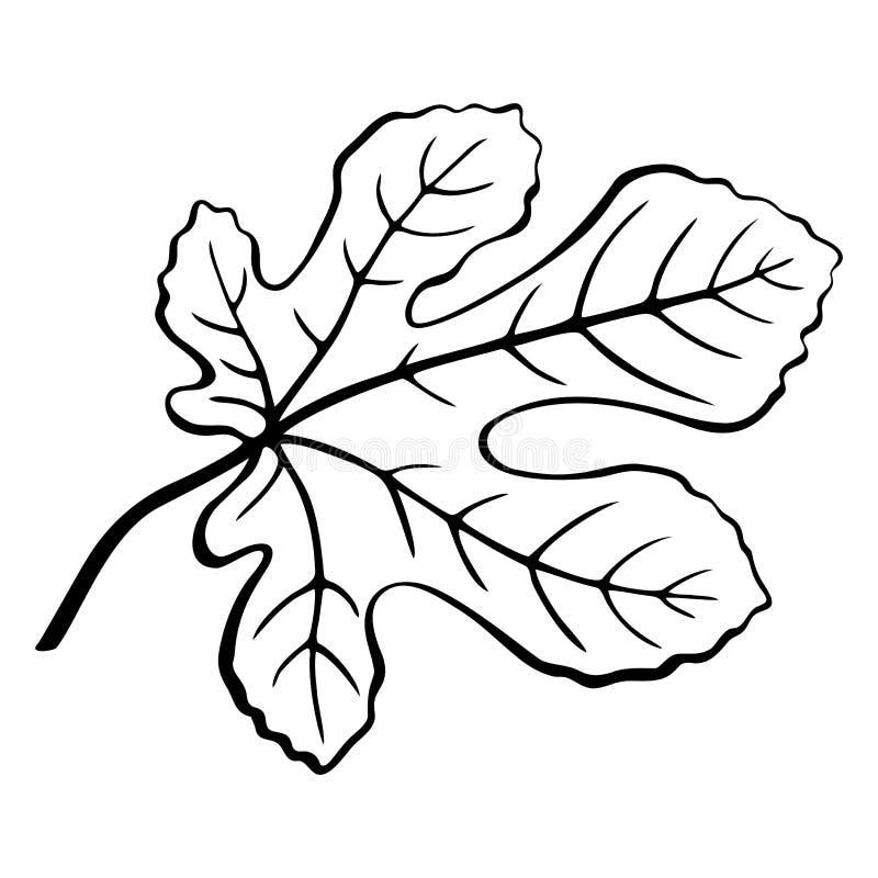 Svart Pictogram för fikonlöv vektor illustrationer
