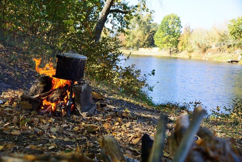 Svart plommonstop med örat på branden nära sjön arkivbilder