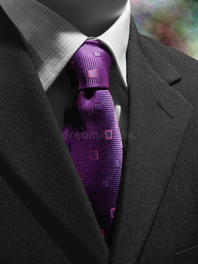 svart purpur dräkttie royaltyfri foto