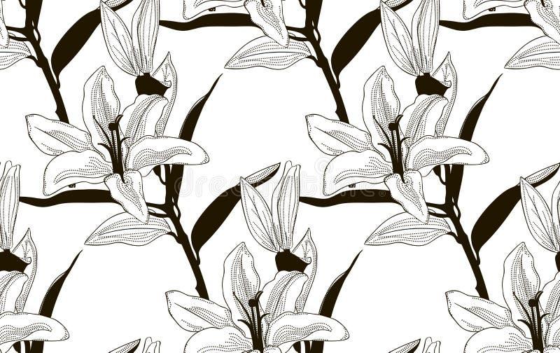 Svart sömlös modell för vektor med utdragna liljor vektor illustrationer