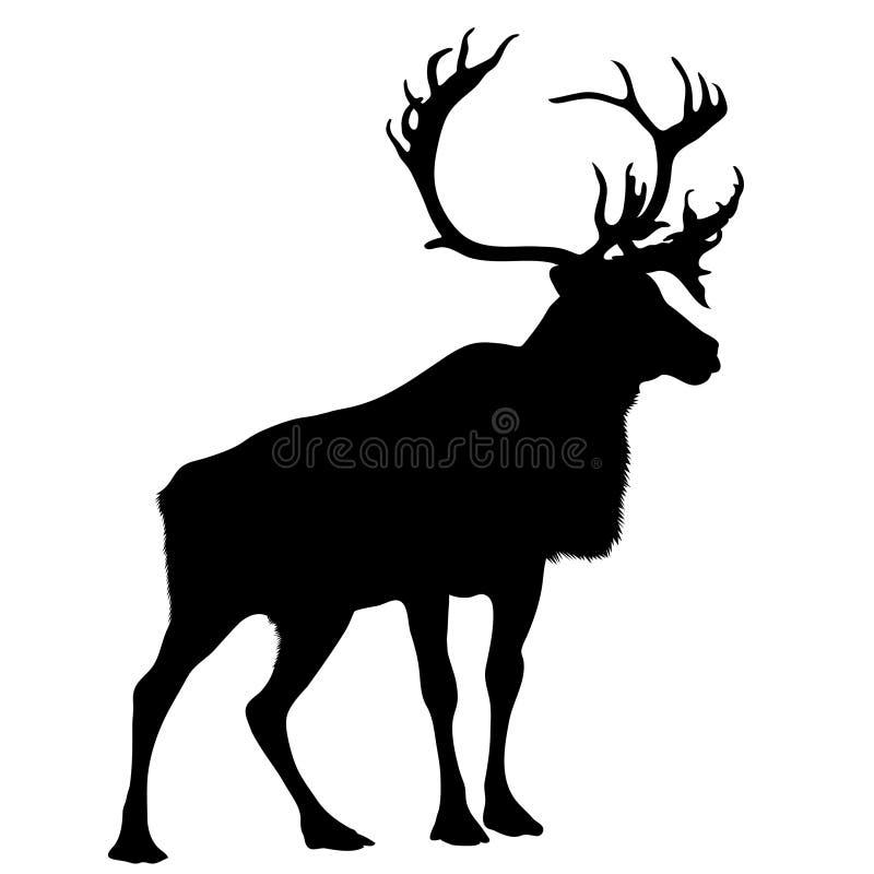 svart silhouettefullvuxen hankronhjort