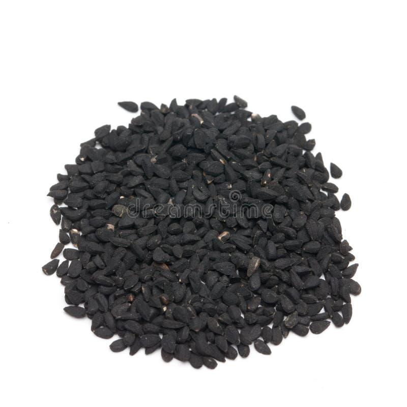 svart spiskummin arkivfoto