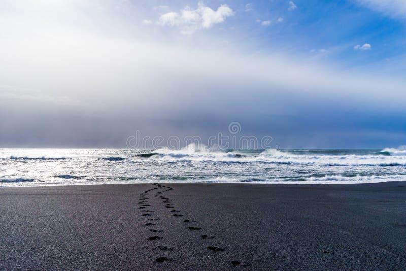 Svart strand av Island —Atlantic Ocean kust arkivbilder